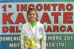1_incontro_karate_della_marca_12_20181119_1965622027